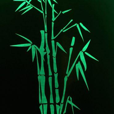 Green Bamboo Garden Lightbox Australia